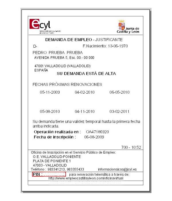Ejemplo de documento de demanda de empleo