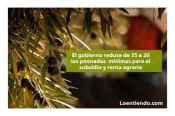 El gobierno reduce de 35 a 20 las peonadas necesarias acceder los subsidios agrarios
