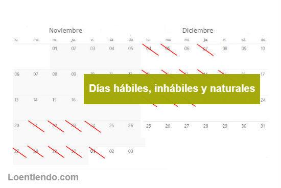 Días hábiles, inhábiles y naturales