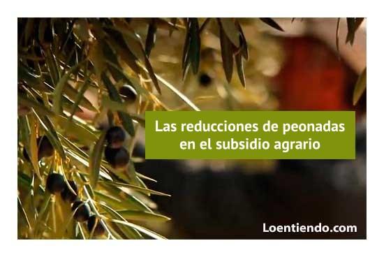 Reducción de peonadas en el campo andaluz y extremeño