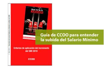 Guía de CCOO para la subida del Salario Mínimo a 900 euros al mes