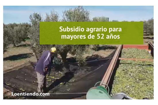 Subsidio agrario mayores de 52 años
