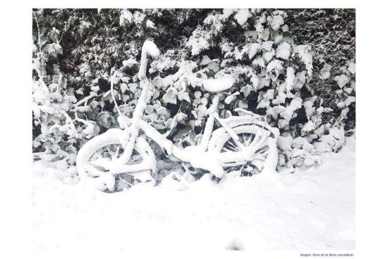Efectos del temporal de nieve filomena