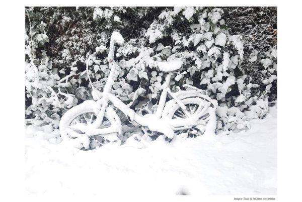Los funcionarios de la Administración Pública afectados por las nevadas podrán teletrabajar el lunes y martes
